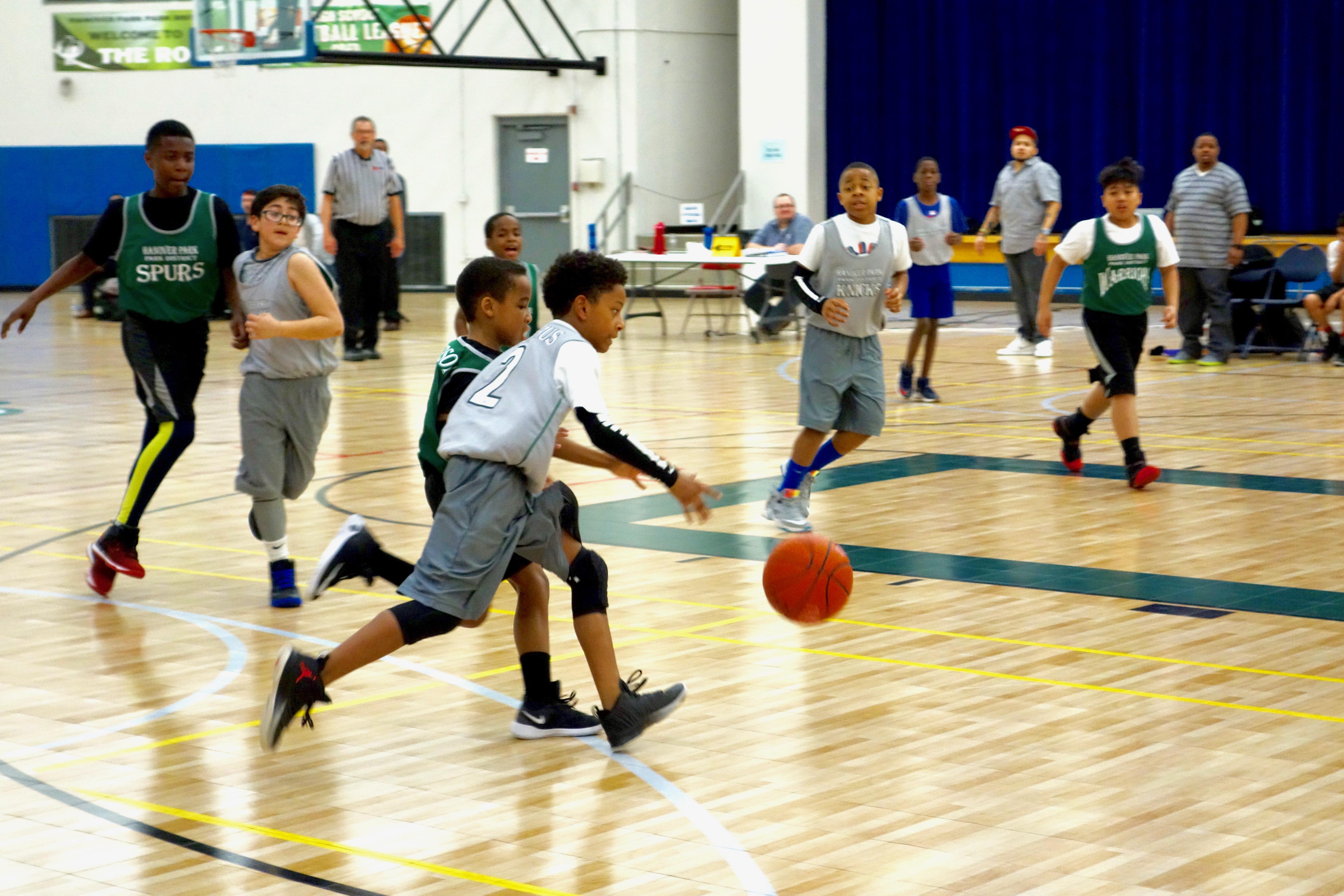 Basketball Leques