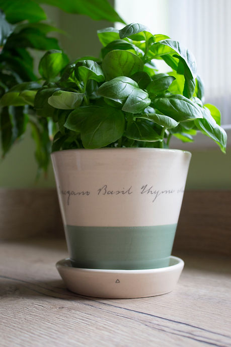AFunge Herb Planter.jpg