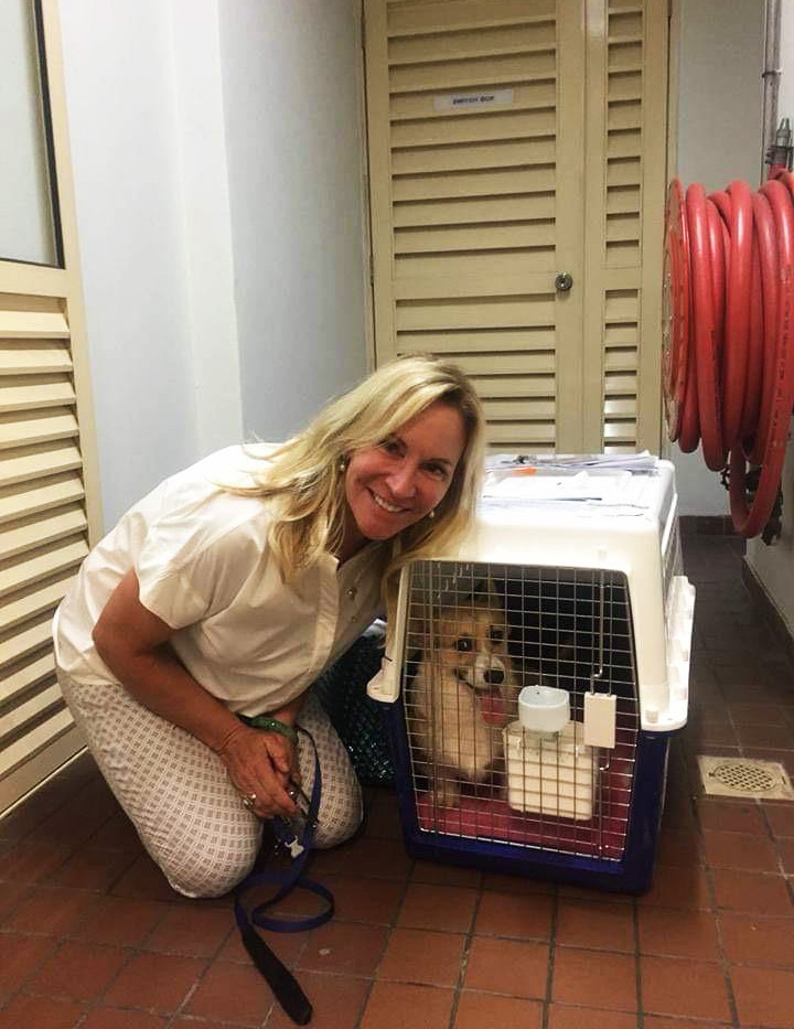 Owner and furkid just arrived Singapore!