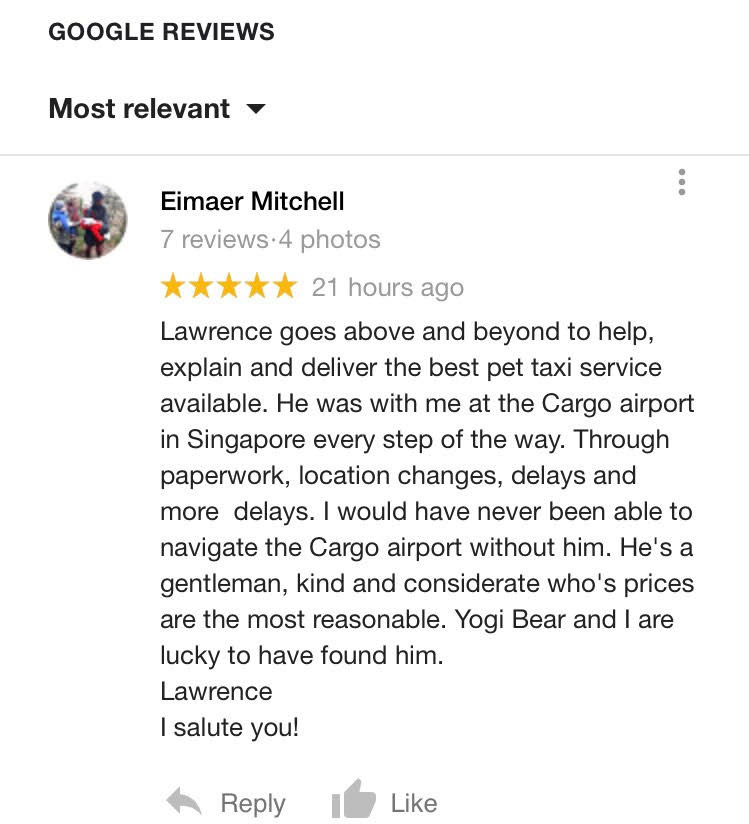 5 Star google review for our Airport pet taxi service