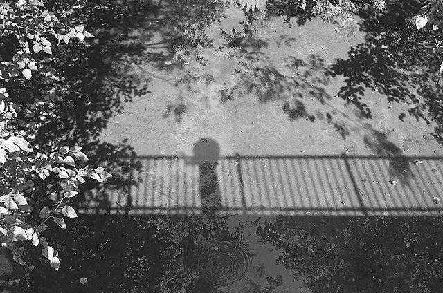 #35mm #blackandwhite  #filmphotography #theballadofstormymarmalade #hannahbarnhardtphotos