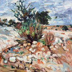 Cavagrande II, huile sur toile, 60x60 cm