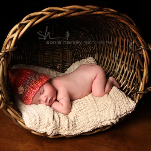 Baby 5.jpg