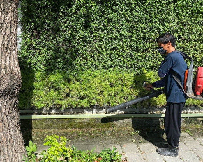 工區圍籬植栽保養修剪