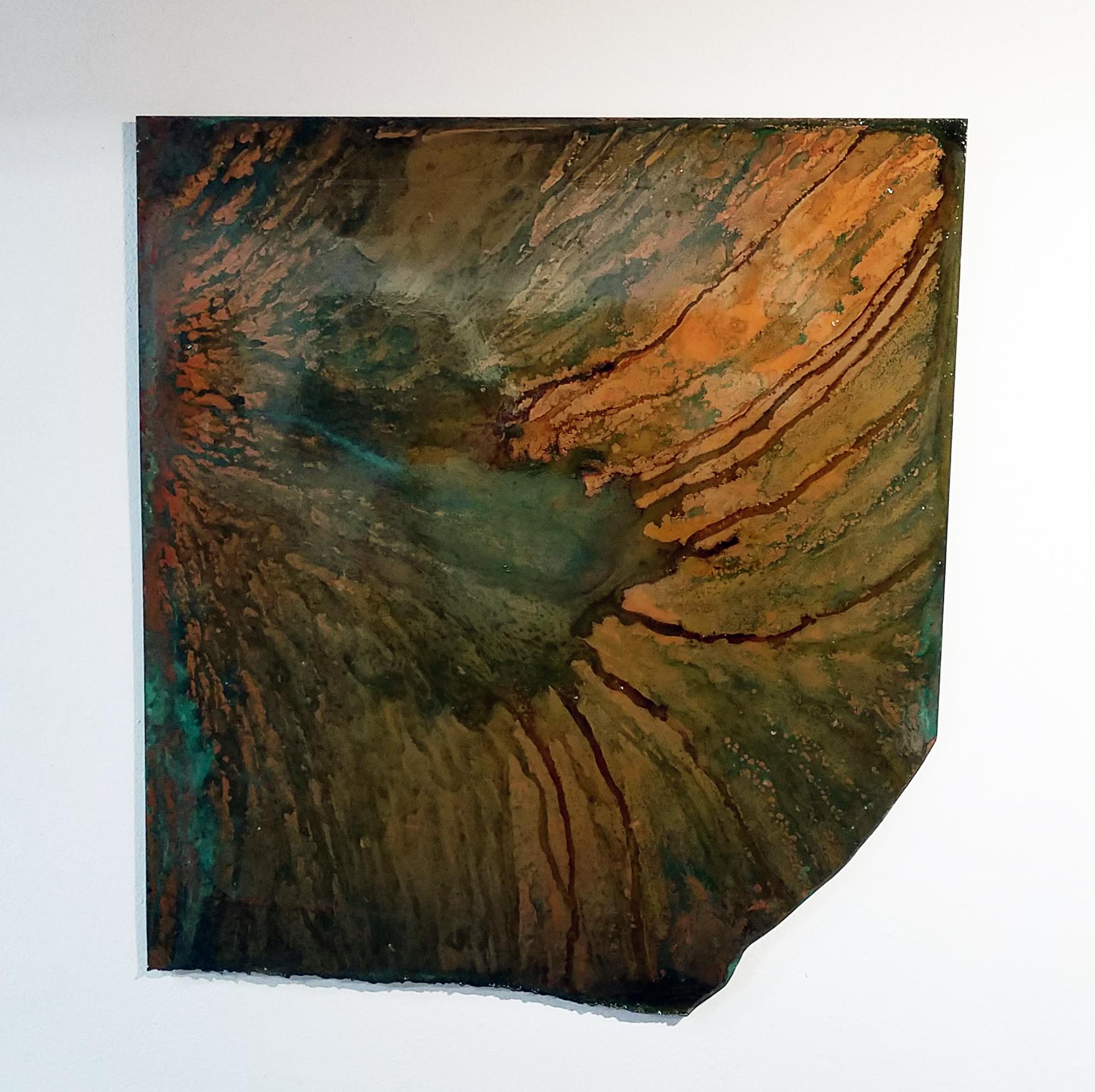 Cosmos of an Ameboa $4800