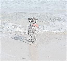 beach baby bnw.jpg
