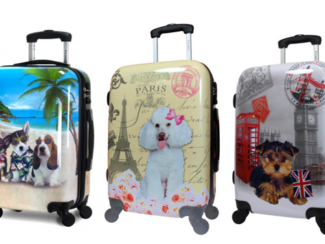 Cute Carry-On Luggage for Dog Lovers
