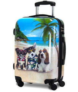 """Chariot 20"""" Carry-On Kona: Dogs on the beach wearing sunglasses"""