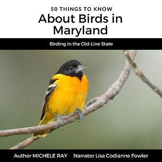Birds in Maryland.jpeg