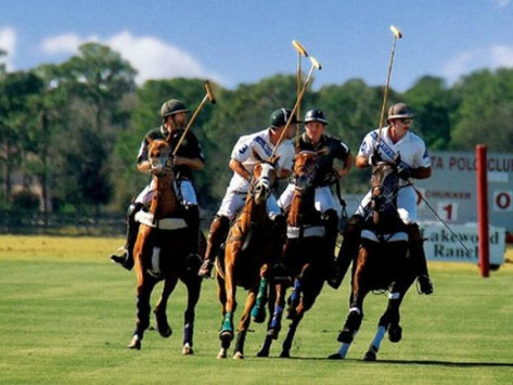 Polo: The Sport of Kings