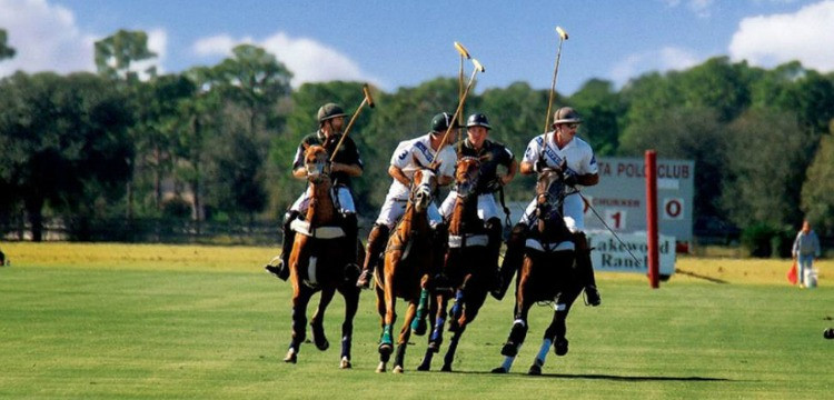 Polo players at Sarasota Polo Club in Lakewood Ranch