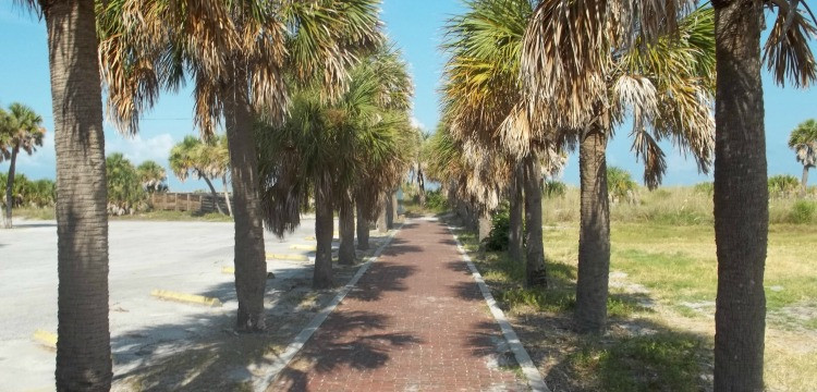 Palm tree-lined walkway at Fort Desoto Park
