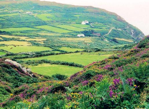 Ireland... 40 Shades of Green