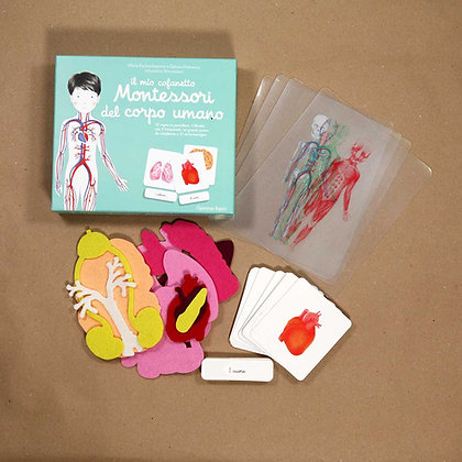 Il mio cofanetto Montessori del corpo umano - L'Ippocampo