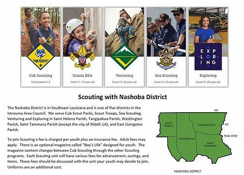 Scouting in Nashoba 12-2020.JPG