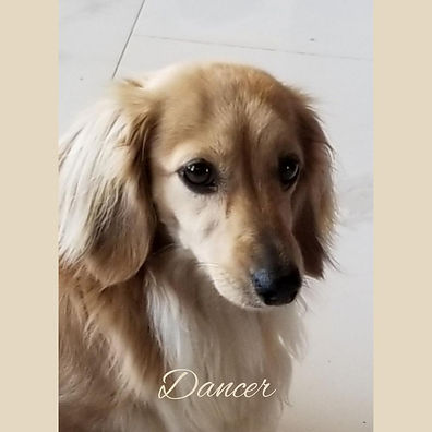 dancer 12092019.jpg