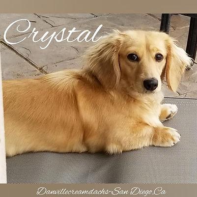 crystal 12092019.jpg