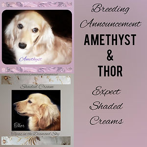 revised amethyst thor 2021.jpg