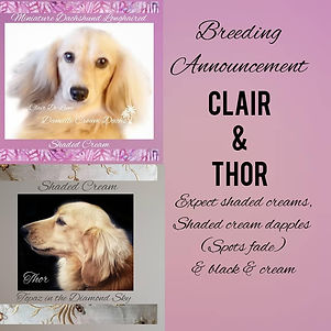 revised clair and thor 2021.jpg