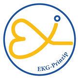 EKG-Prinzip