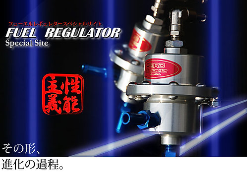 SARD Fuel Pressure Regulator - Type RJ
