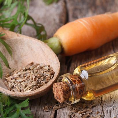 L'huile végétale de carotte