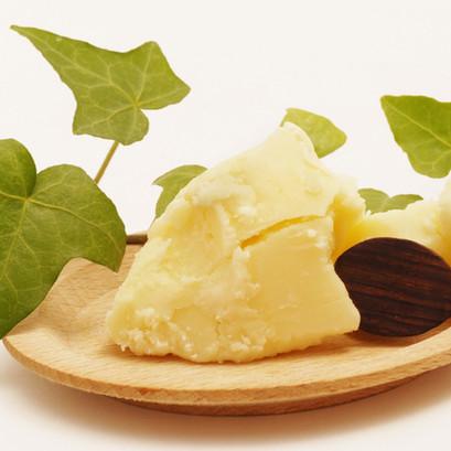 Le beurre de cacao