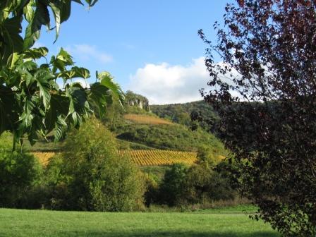 Vignes_sous_la_roche,_début_d'automne.JPG