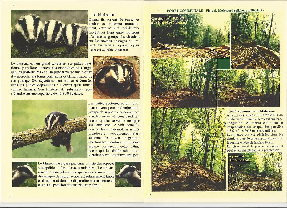 pages 14 et 15.jpg