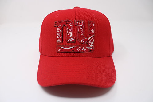 NY Paisley (Giants)