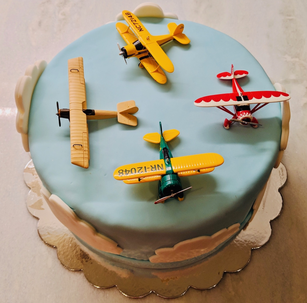 Airplane Cake Top-View.png