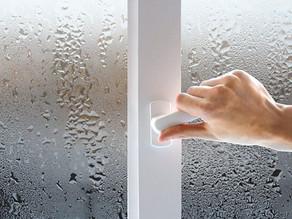 Небезпека конденсату на вікнах