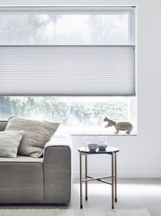 02_Entity_Group_Object_Pleated_Blinds_be