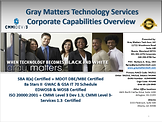 Gray Matters Presentation Front Pg.png
