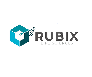 Rubix Strategies