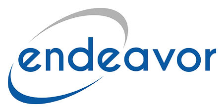 Endeavor Consulting Group