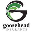 Goosehead Insurance.png