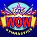 Gwinnett Gymnastics.jpg