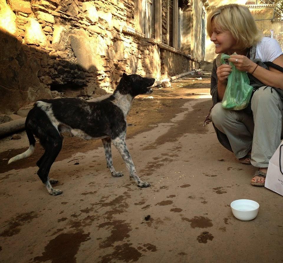 Tammie Stevens helps strays in India (billyfishbooks.com, The Lazarus Fund)