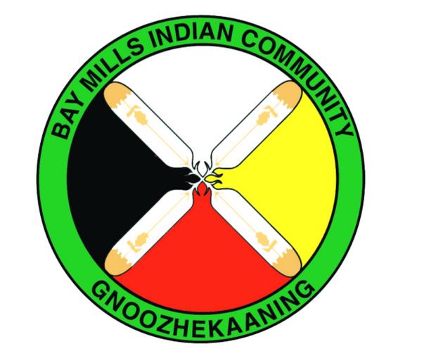BMIC logo.png