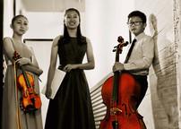 Opus119 MEE Trio