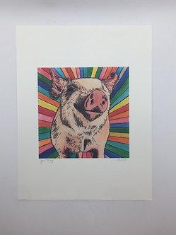Rainbow Pig by Jen Meyer