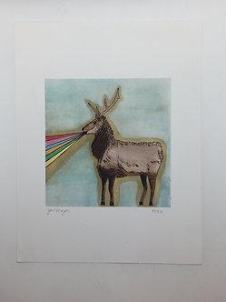 Rainbow Stag Print by Jen Meyer
