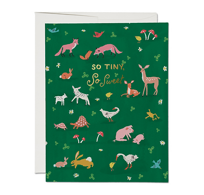 Tiny Animals Card by Red Cap Cards