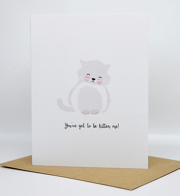 You've Got to be Kitten Me! by Pennie Post