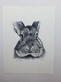 Bunny Print by Jen Meyer