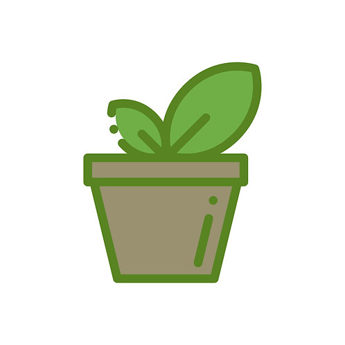 Bloeiende of groene kamerplant