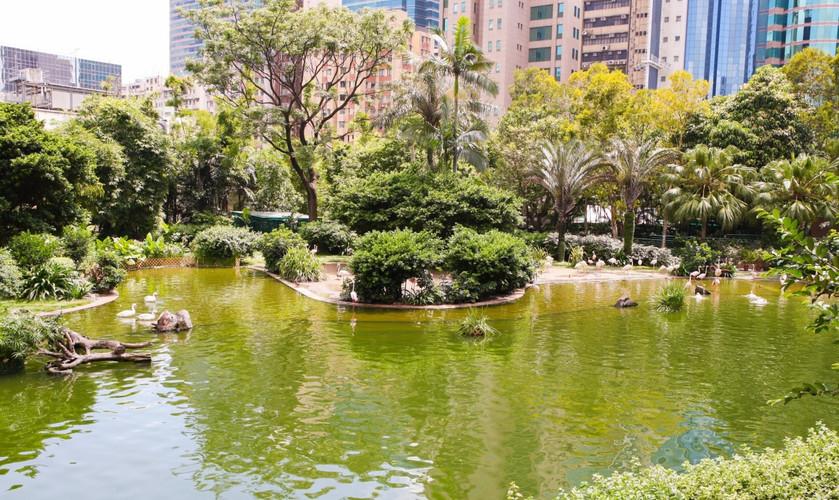 Kowloon-Park_904_1920x1280_edited.jpg