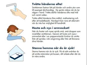 瑞典     找尋自然療愈與抗疫之間的平衡