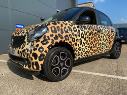 Cheetah Smart Car